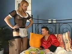Guy sucks cock of housemaid shemale