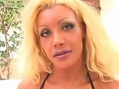 Tranny sensually shows perfect body